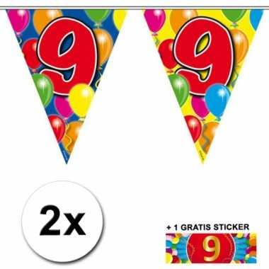 2 gekleurde vlaggenlijnen 9 jaar met sticker