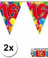 2 gekleurde vlaggenlijnen 16 jaar met sticker