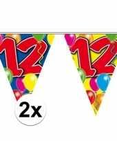 2x gekleurde vlaggenlijn 12 jaar 10 meter