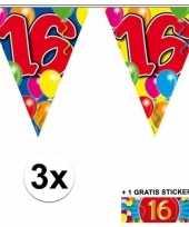 3 gekleurde slingers 16 jaar met sticker