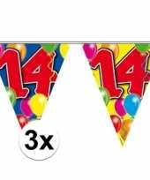 3x gekleurde vlaggenlijn 14 jaar 10 meter